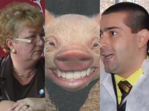 draghici_porc_foncea